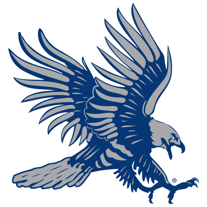 Athletic Hawk Blue and Gray
